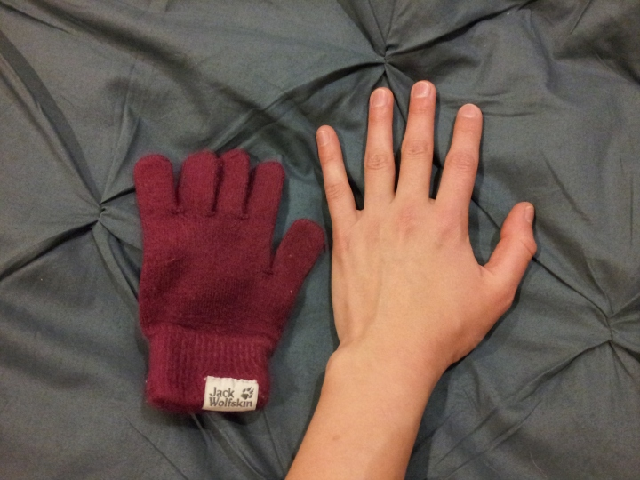 Glove for ants