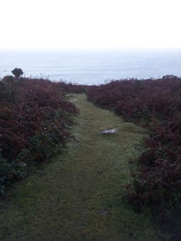 Trevean Cliff, Cornwall